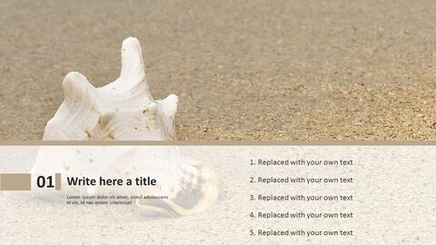 Seashell on the Beach - Free Powerpoint Template_03