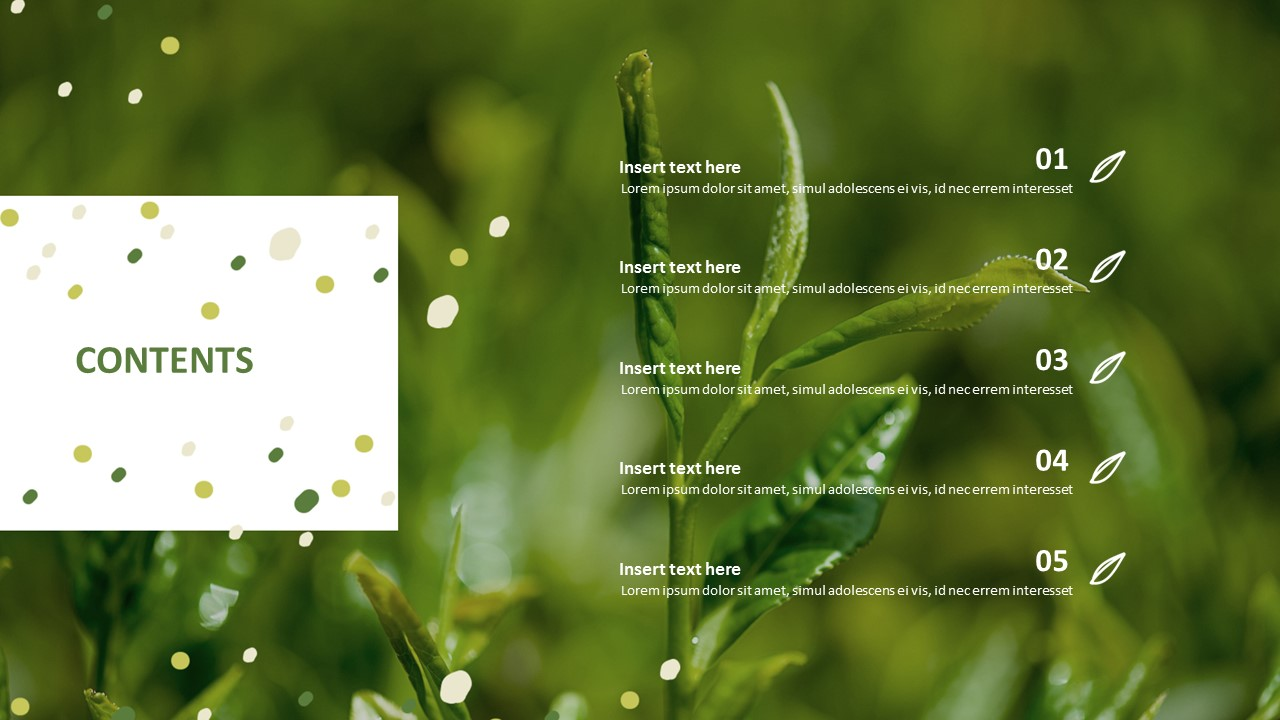 Best Ppt Template Free Download Organic Green Tea
