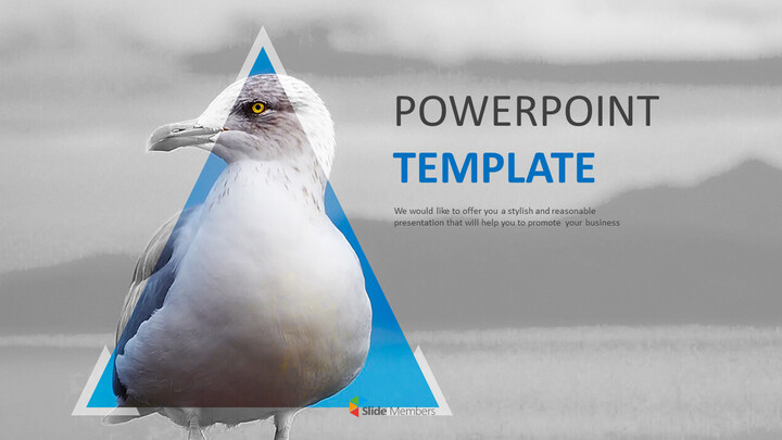 Free PPT Presentations - Seagull_01