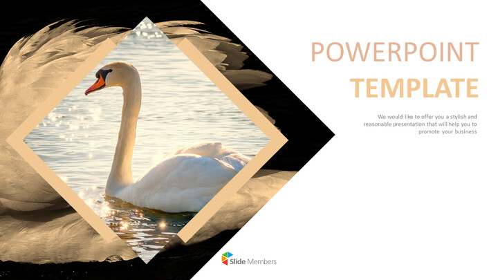 Swan Lake - Best PPT Template Free Download_01