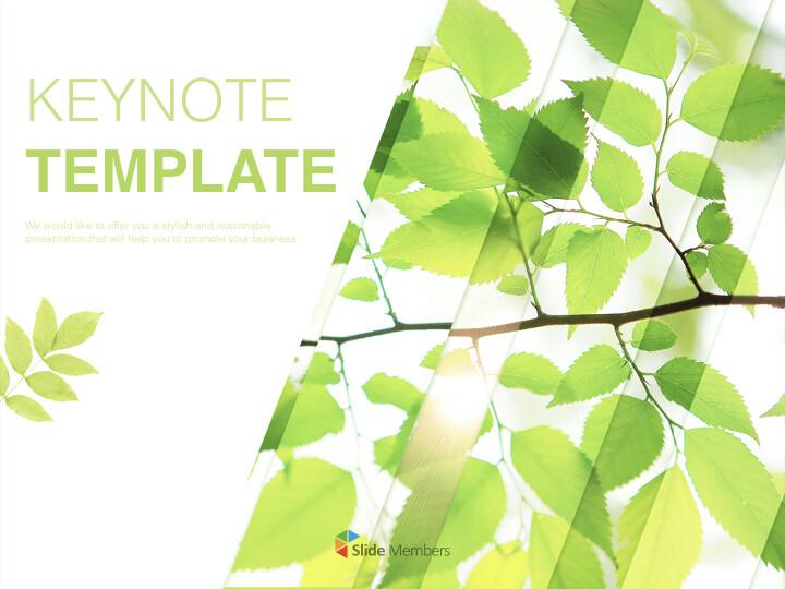 6 월 신선한 잎 - 무료 키노트 템플릿_01