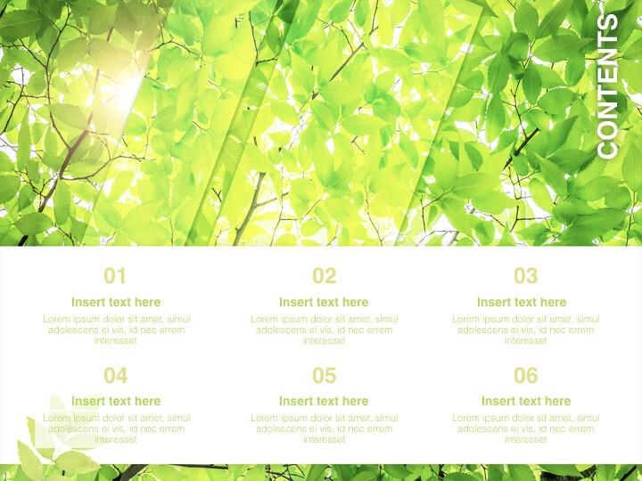 6 월 신선한 잎 - 무료 키노트 템플릿_02
