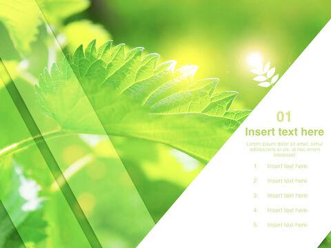 6 월 신선한 잎 - 무료 키노트 템플릿_03