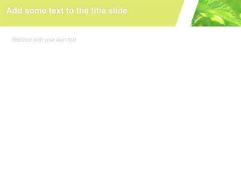 6 월 신선한 잎 - 무료 키노트 템플릿_05