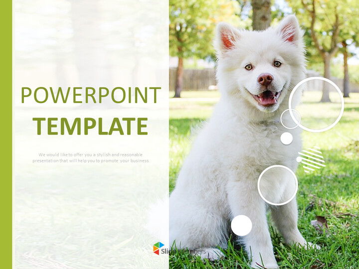 Google Slides Template Free - White Dogs_01