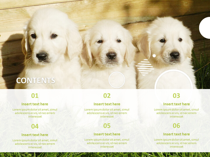 Google Slides Template Free - White Dogs_02