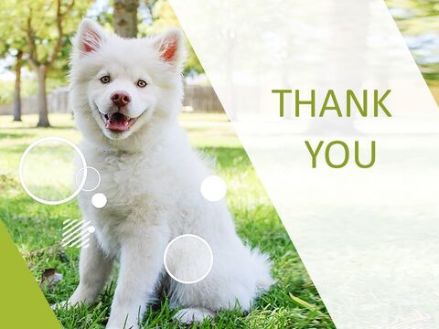 Google Slides Template Free - White Dogs_03