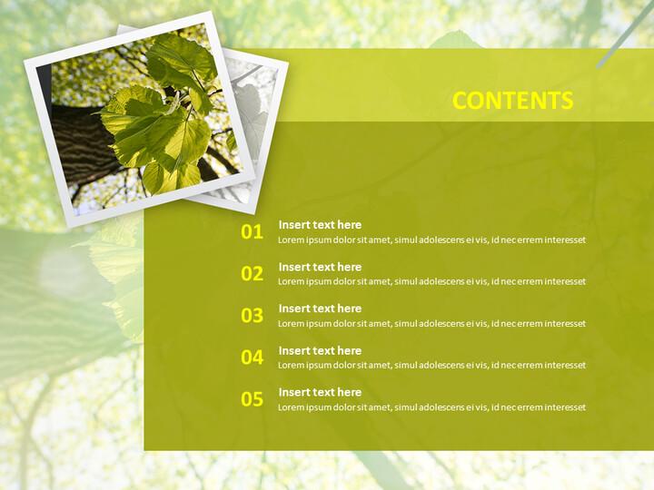 Free Google Slides Template - Green Leaves_02
