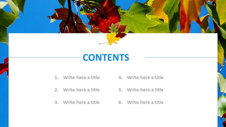 푸른 하늘과 낙된 엽 - 무료 Google 슬라이드_05