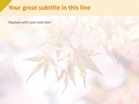 Free 프레젠테이션 템플릿 - 단풍 나무_05