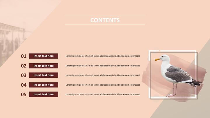 Google 슬라이드 무료 다운로드 - 갈매기_02