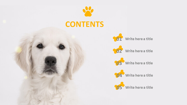 Google Slides Template Free - Dog Clothes_04
