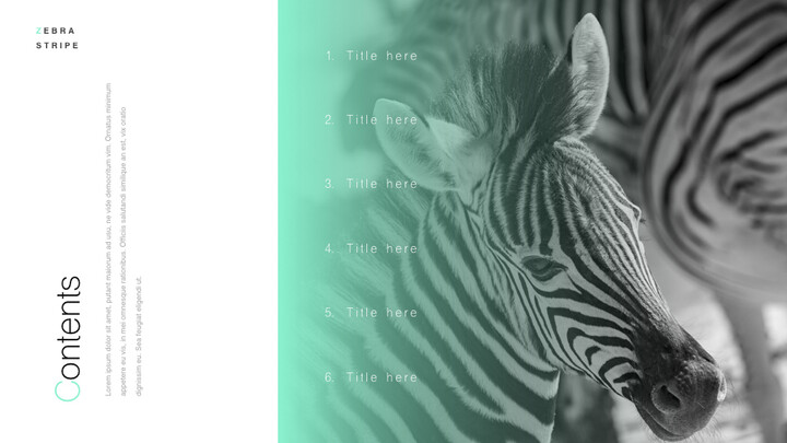 Zebra Stripe PowerPoint to Keynote_02