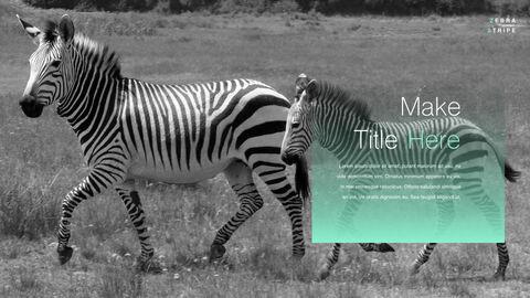 Zebra Stripe PowerPoint to Keynote_04