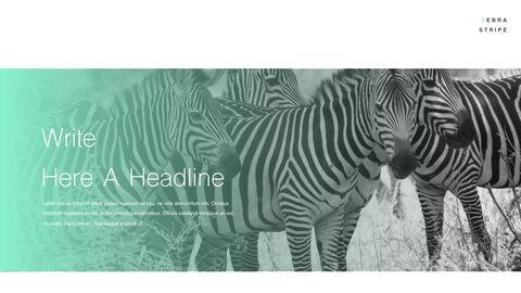 Zebra Stripe PowerPoint to Keynote_05