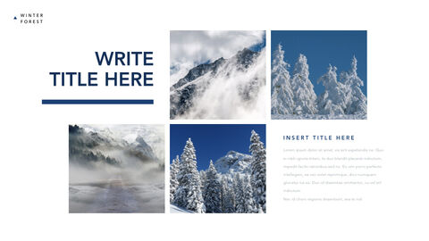 Winter Forest Multipurpose Presentation Keynote Template_04