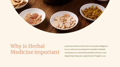 한의학 심플한 Google 슬라이드 템플릿_03