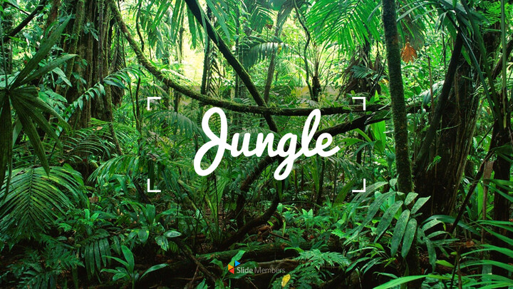 Jungle Simple Google Slides Templates_01