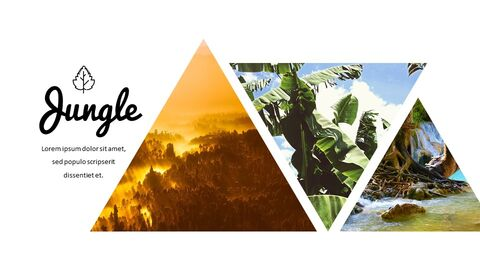 Jungle Simple Google Slides Templates_04