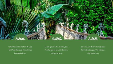 Jungle Simple Google Slides Templates_05