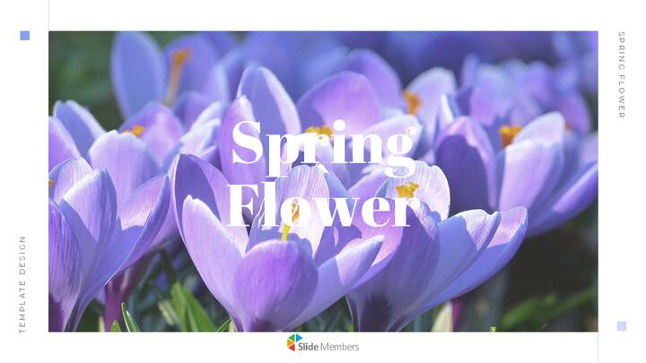 봄 꽃 편집이 쉬운 Google 슬라이드_01