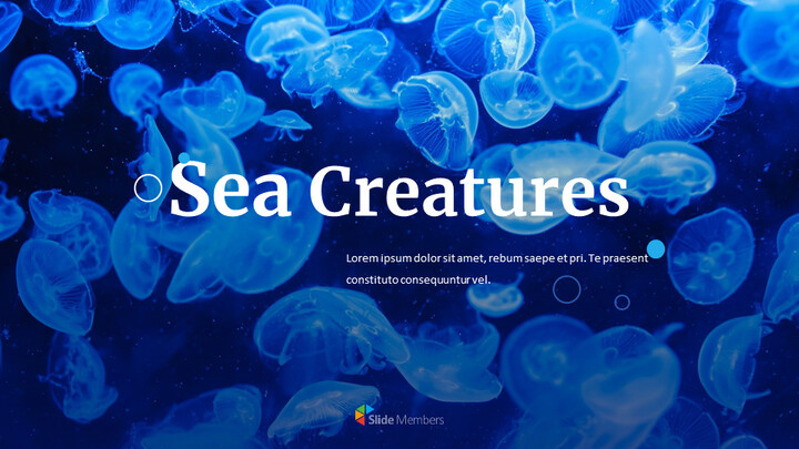 Sea Creatures Easy Slides Design_01