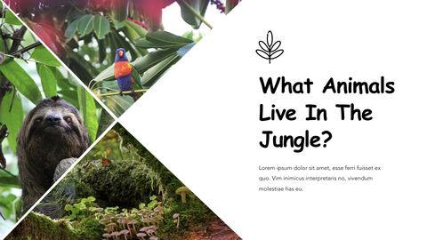 Jungle Theme Keynote Design_03