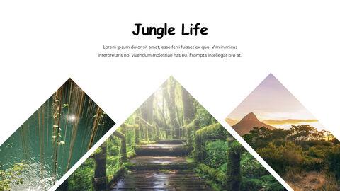 Jungle Theme Keynote Design_07