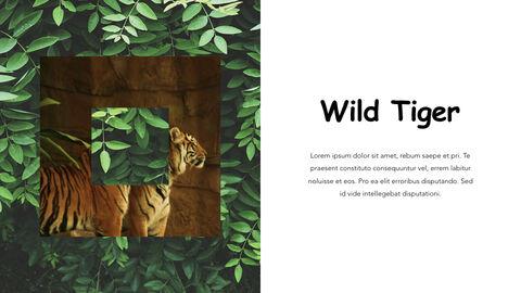 Jungle Theme Keynote Design_10