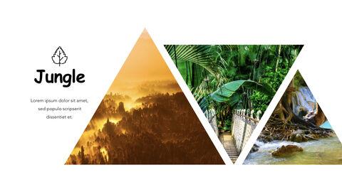 Jungle Theme Keynote Design_11