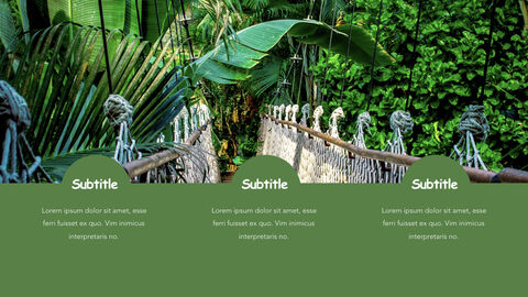 Jungle Theme Keynote Design_12