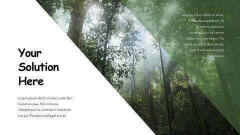 Jungle Theme Keynote Design_20