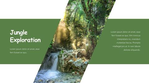Jungle Theme Keynote Design_21