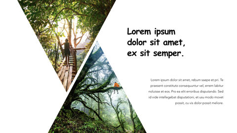 Jungle Theme Keynote Design_23