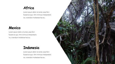 Jungle Theme Keynote Design_26