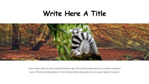 Jungle Theme Keynote Design_28