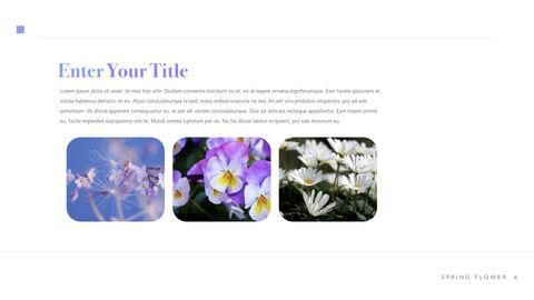 Spring Flower Keynote PowerPoint_04