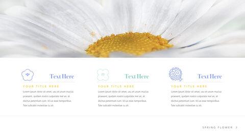 Spring Flower Keynote PowerPoint_03