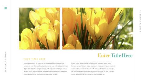Spring Flower Keynote PowerPoint_11