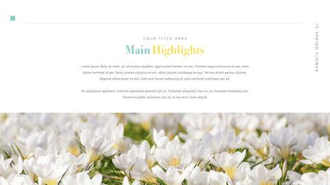 Spring Flower Keynote PowerPoint_16