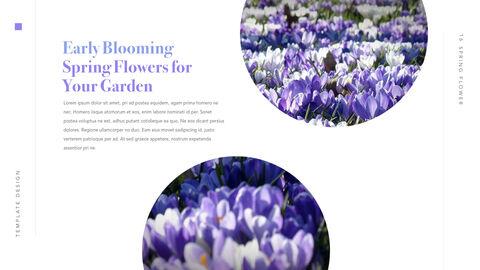 Spring Flower Keynote PowerPoint_17