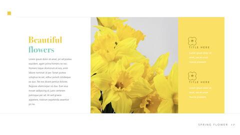 Spring Flower Keynote PowerPoint_18