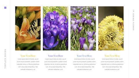 Spring Flower Keynote PowerPoint_20