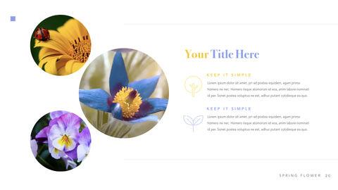 Spring Flower Keynote PowerPoint_21