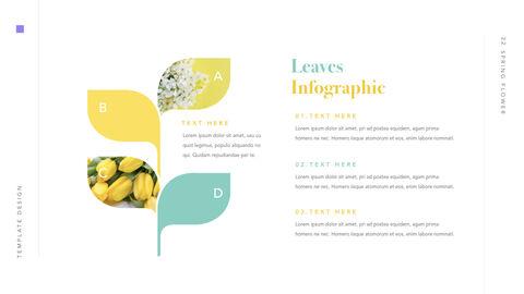 Spring Flower Keynote PowerPoint_23