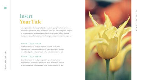 Spring Flower Keynote PowerPoint_28