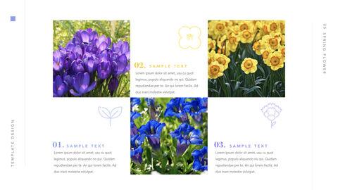 Spring Flower Keynote PowerPoint_32