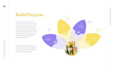 Spring Flower Keynote PowerPoint_36