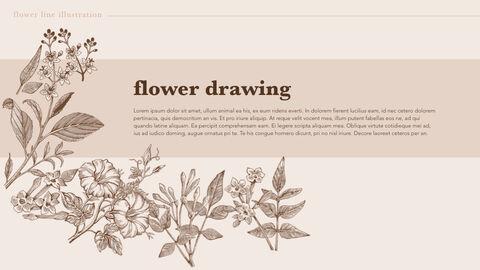 Flower Illustration PPT Keynote_05
