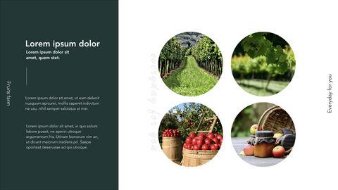 Fruits Farm Keynote mac_05